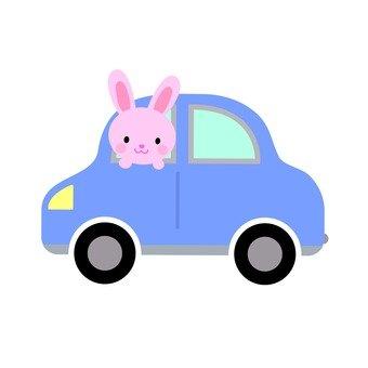 Usagi and car