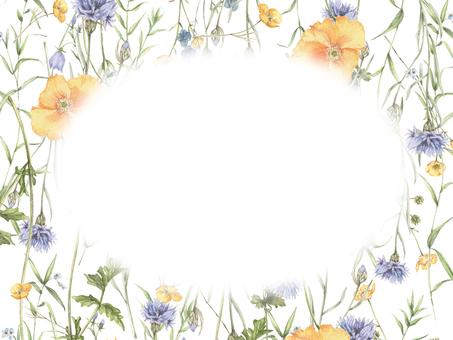 Flower frame 324 - Refreshing flower frame, Poppy