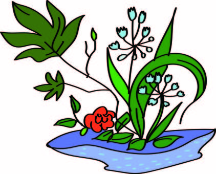 February Ikebana