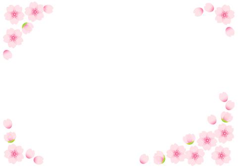 벚꽃 프레임 01