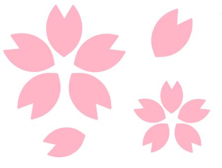 Sakura petals (thin)