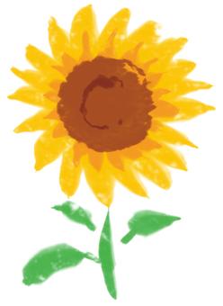 Sunflower 001