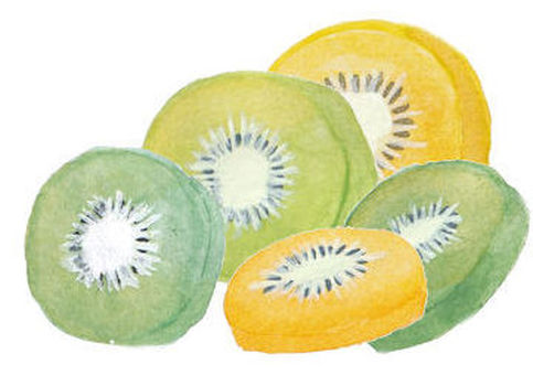 Round cut kiwi