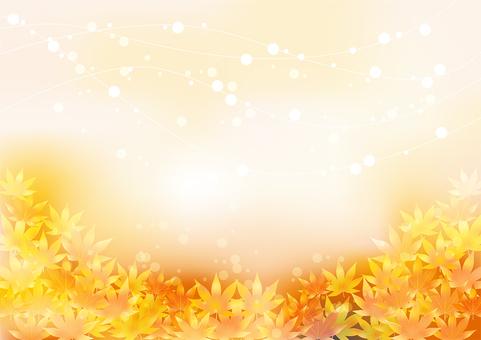 Autumn leaves 392