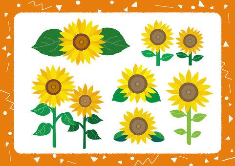 【夏】色々なひまわりのイラストセット