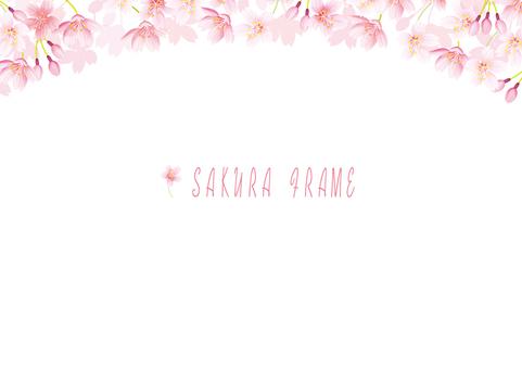 桜フレーム10