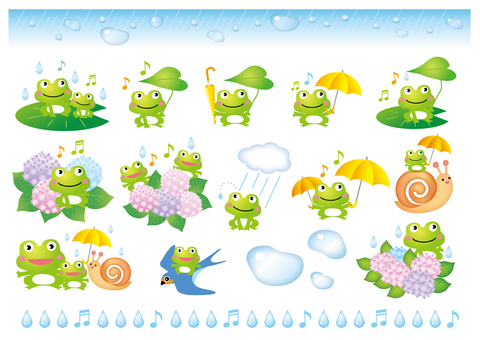 A variety of fun rainy season frogs