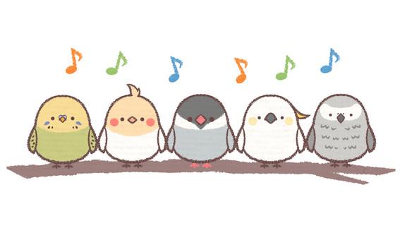 노래 새들