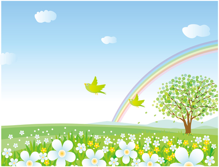Landscape with birds, rainbow and flower blooming hills