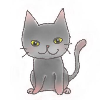 Kitten (gray hair)
