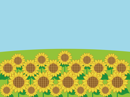 Sunflower and blue sky frame
