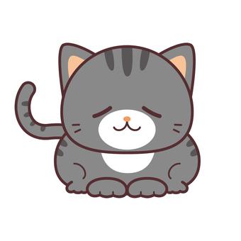 猫 グレー 縞模様3