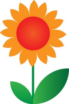 Flower -001