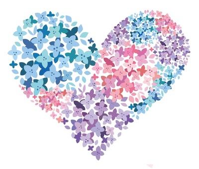 Hydrangea 10 Heart