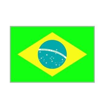 국기 브라질