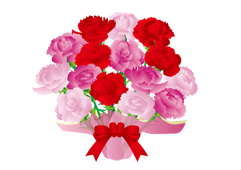 Carnation G01