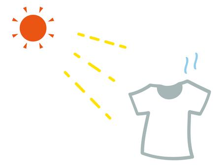 Sun-dried