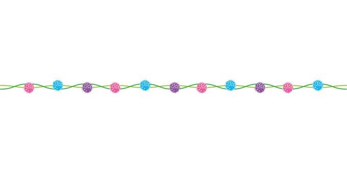 Allium line