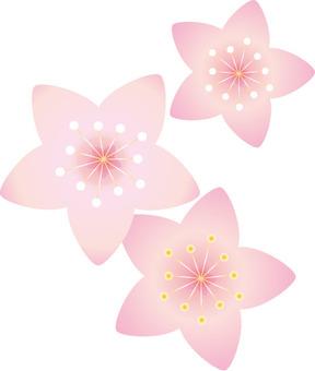 복숭아 꽃 세