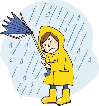 Disaster (heavy rain / typhoon)