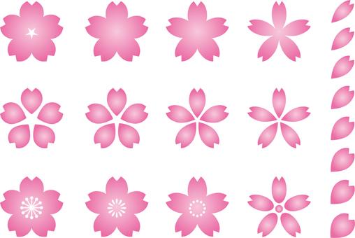 Sakura 1c