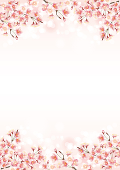 Cherry blossom, frame, pink circle