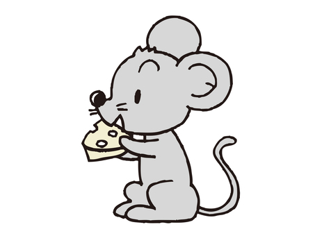 Mouse chewing cheese