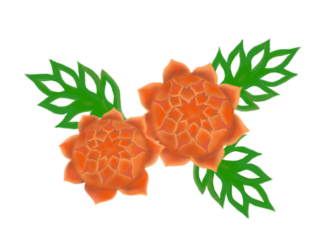 Carving_Carrot Dahlia and Cucumber Leaves