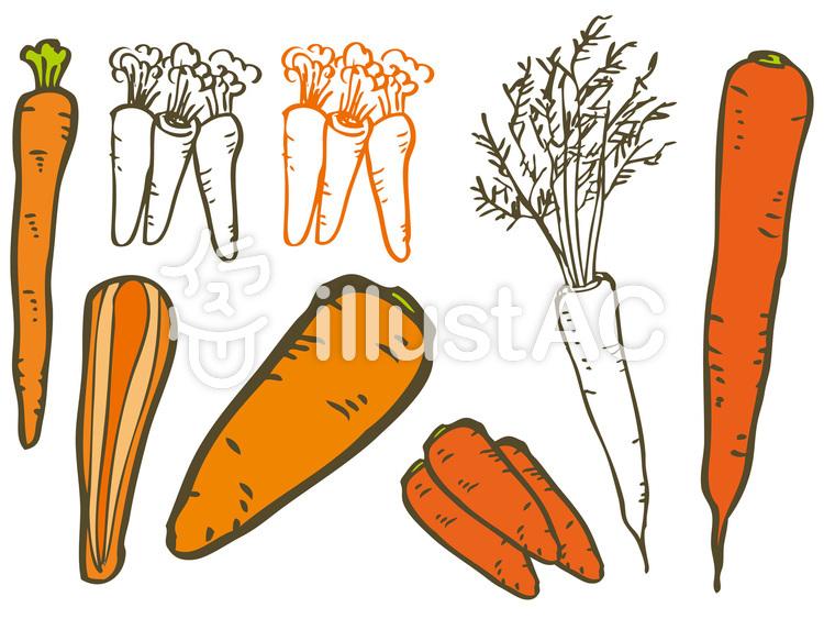 人参野菜手書きシンプル新鮮可愛いイラスト