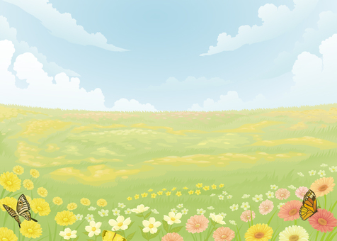 Flower field and butterflies
