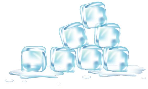 얼음 많이