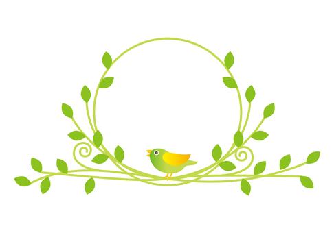 Circle of little birds