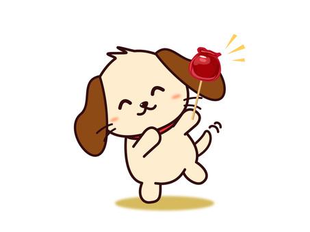 왕개 씨 (사과 사탕)