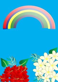 Hibiscus and Plumeria (rainbow)