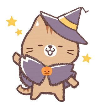 할로윈 고양이