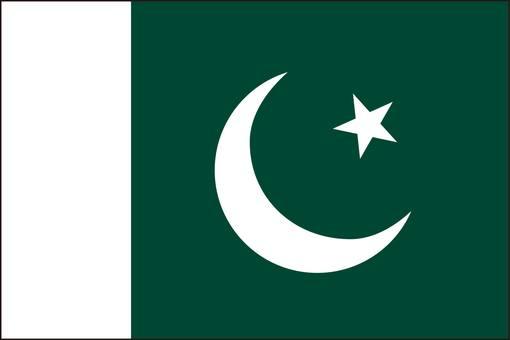 Pakistan Flag (without name)