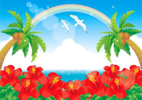 여름 바다의 프레임
