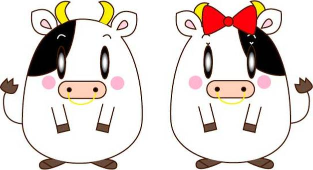 Cow couple standing