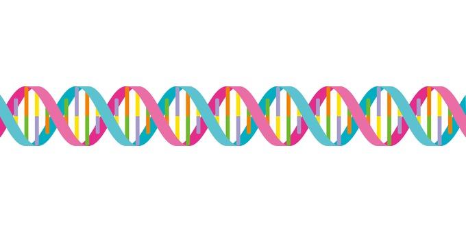 DNA gene double helix