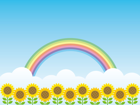 Sunflower field and rainbow background material