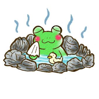Hot spring frog color