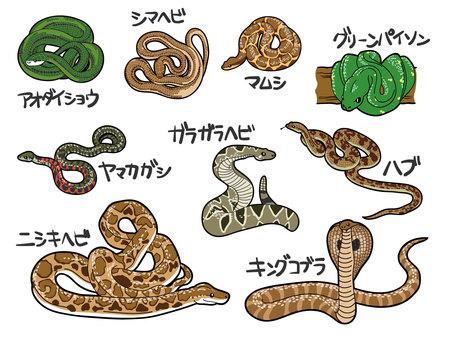 뱀 9 종
