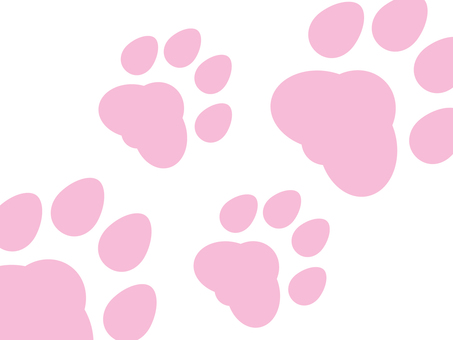 Pink flesh ball footprints