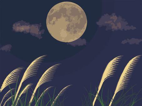 Full moon and Susuki