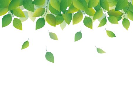 綠色圖像背景圖