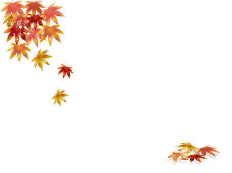 Autumn leaves 288