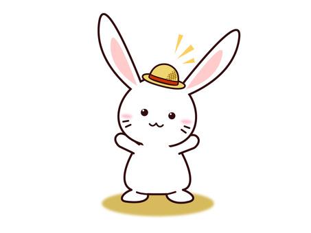 Usagi (Hat)