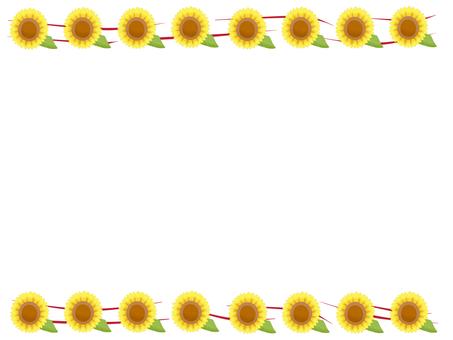 Sunflower frame material