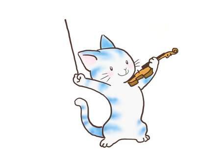 바이올린 고양이 56