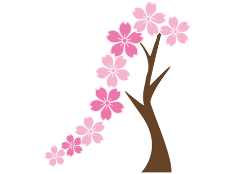 Weeping cherry tree a